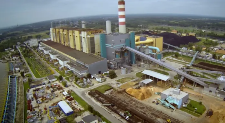 Biomass in Indonesia's energy mix