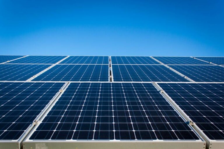 Renewable energy still in the running post-COVID