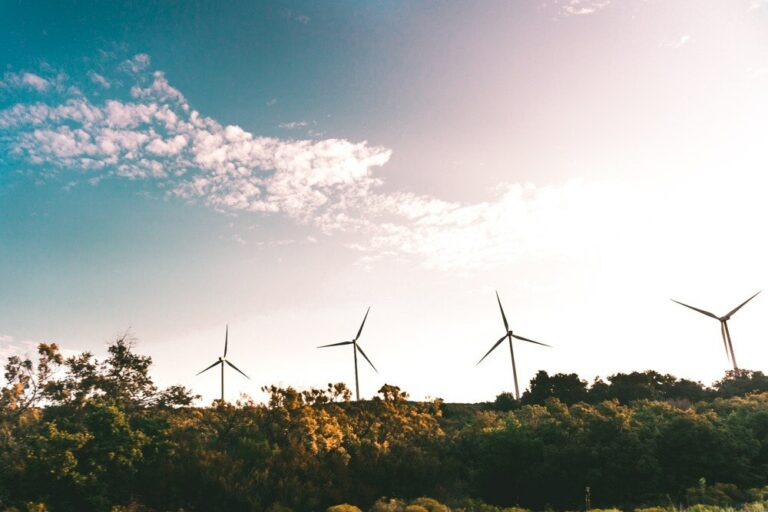 Renewable Energy Integration Vital to Southeast Asia's Decarbonisation Targets